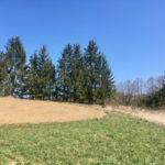 jarní slunečný den v Tachově na poli